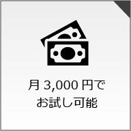 月3,000円でお試し可能